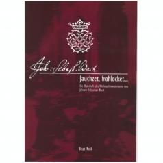 Beat Rink: Jauchzet, frohlocket... Die Botschaft des Weihnachtsoratoriums von J.S: Bach